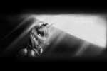 Memories I by Ventious