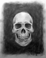 This is not a Skull by MesolimbicArt