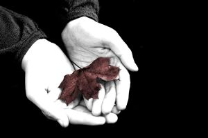 Nature, in our hands by tetep