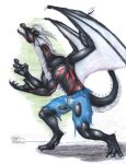 Myan-Dragon'd Commission 6 by Ageaus