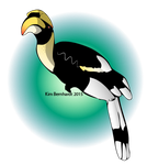 Great Hornbill Vector by phantos