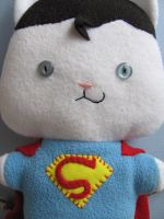 Supermanx by mypetmoon