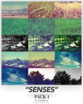Senses - Wallpaper Pack 1 by requestedRerun