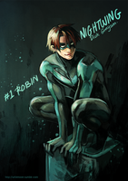 DC : Nightwing by whitmoon