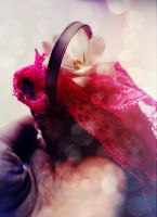 Wicker and Lace by UntamedUnwanted