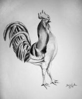 Rooster Commission by xShadowfoxX