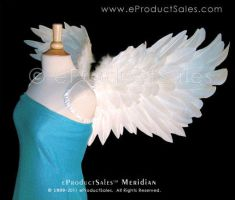 Meridian Wings side by eProductSales