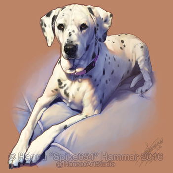 Sketchy Pet Portrait 18 by HannasArtStudio