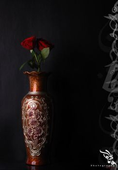 Red Rose by lamst-ebda3