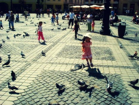 pidgeons chase by andr33aa