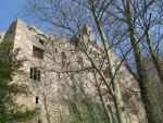 Places 387 castle ruin in forest by Dreamcatcher-stock