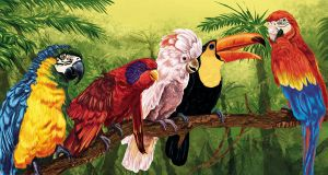 Tropical Parrots by bubba-messa