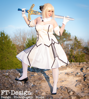 Saber Lily .:5:. by THWT