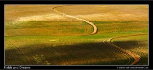 Fields and Dreams by Andrew-and-Seven