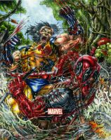 Wolverine vs Deadpool, Marvel Heroes and Villains by DKuang