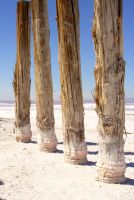Salted Pillars by greenwalled1