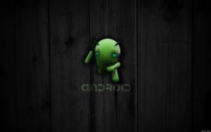 EgFox BugDroid Wood 2010 HD by Eg-Art