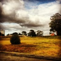 Over The Grass Is The Places My Mates and I Hang by XxXNikkiColaXxX