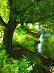 Tranquility Creek by catsAREtheDEVIL