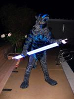 What i am taking to anthrocon! part 5 by noiro18