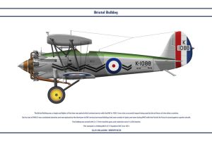 Bulldog GB 17 Sqn 3 by WS-Clave