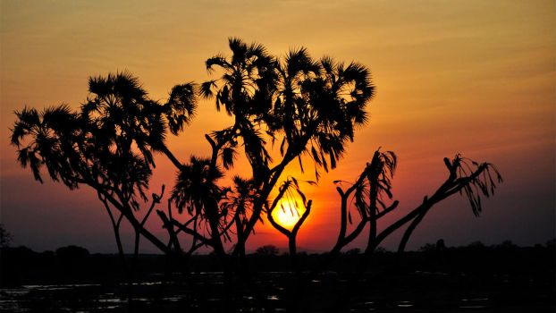 African Sunset by Gbrlit