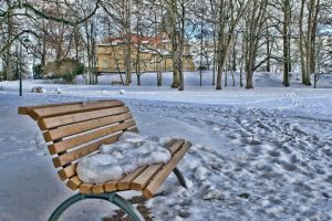 201301 Park Winter 03 by irrerpolterer
