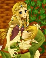 ZELDA_My hero, my historia by sARaLy560