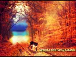 Walking away from Paradise... by Brolific