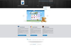 SteinWasser website by anca-v