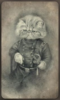 Colonel Puss by Sash-kash