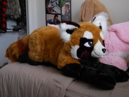 Big Red Panda Plush :D by REZBiTx