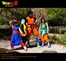 Dragonball Couples by hecticzephyr