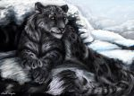 Snow leopard by Ruth-Tay