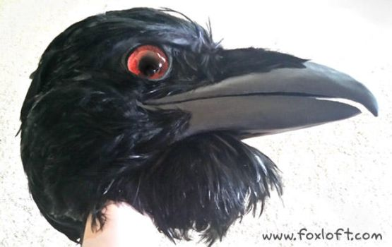 Brown-Eyed Raven Mask by Foxfeather248