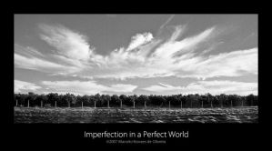 Imperfection in aPerfect World by KDEWolf
