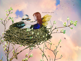 Last to fly by Jeni-Sue
