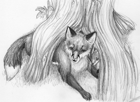 Fox Sketch by FerianMoon