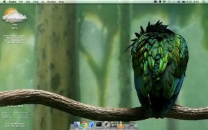 Green Angry Bird - OS X Lion by M-WaR