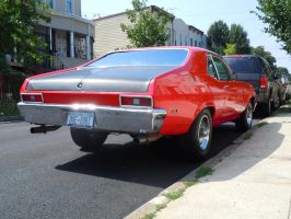 Two Tone Nova by Brooklyn47