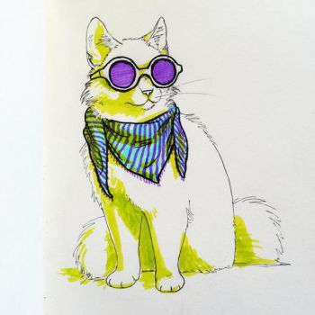 Cool Cat by soyrwoo