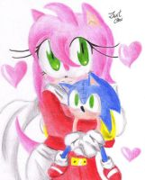 Amy Rose and Sonic Doll by ZantChan