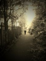 THE LONELY WALK by ANDYBURGESS