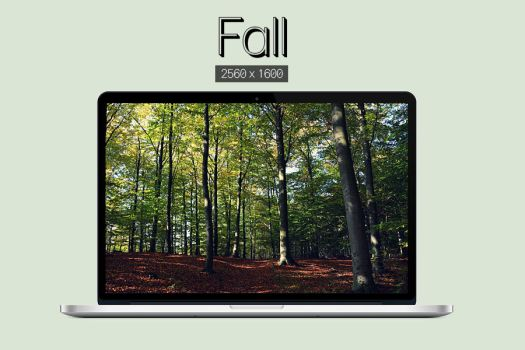 Fall by purethoughts