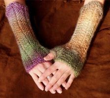 Autumn Bliss Fingerless Gloves by noisypixie