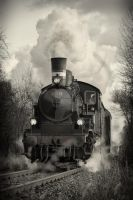 Steamtrain rolling by abuethe