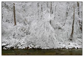 Snow to the creek.L1010385, with story by harrietsfriend