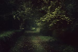 Silent path by Dahud
