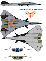 Pacific Aerospace SF-19A/B Phoenix by bagera3005
