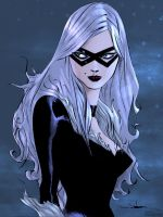 Blackcat by Brianskipper